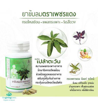 ยาขับลมตราเพชรแดง แก้กรดไหลย้อน สมุนไพรเปล้าตะวัน ขวดสีเขียว
