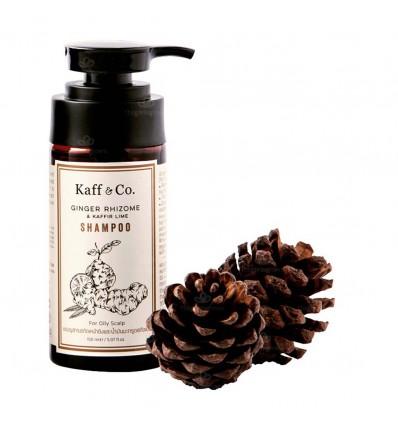 แชมพูสารสกัดเหง้าขิงและน้ำมันมะกรูด สกัดเย็น 150 มล. - Kaff & Co by NATURE INSPIRED