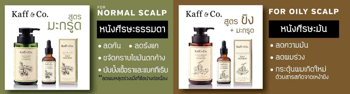 Kaff and Co kaffir lime hair products แชมพูมะกรูดสกัดเย็น