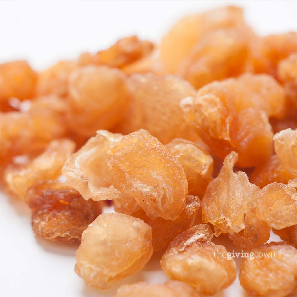 Nana Fruit dried Longan